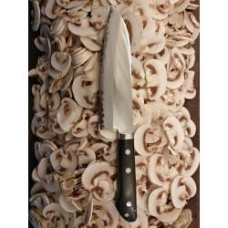 AOGAMI Japansk Santoku kniv 16,5cm